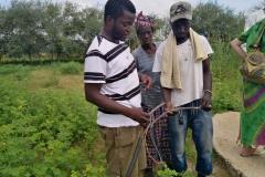 Kabel Prüfen für eine Solar Pumpe
