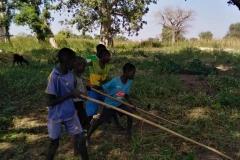 Auch die Kinder müssen zur Erntezeit mitarbeiten. Sie nehmen die Erdnüsse aus de Erde.