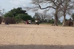 Nach ein paar Stunden ist der Einkauf da. Mit einer Eselkutsche fuhren sie auf den nächst gelegenen Markt, um für die nächsten Tage Essen für alle zu besorgen.