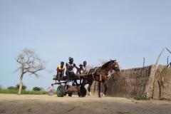 Die jungen Männer machen sich mit ihrer Kutsche auf dem Weg in die Stadt, um Lebensmittel zu besorgen.