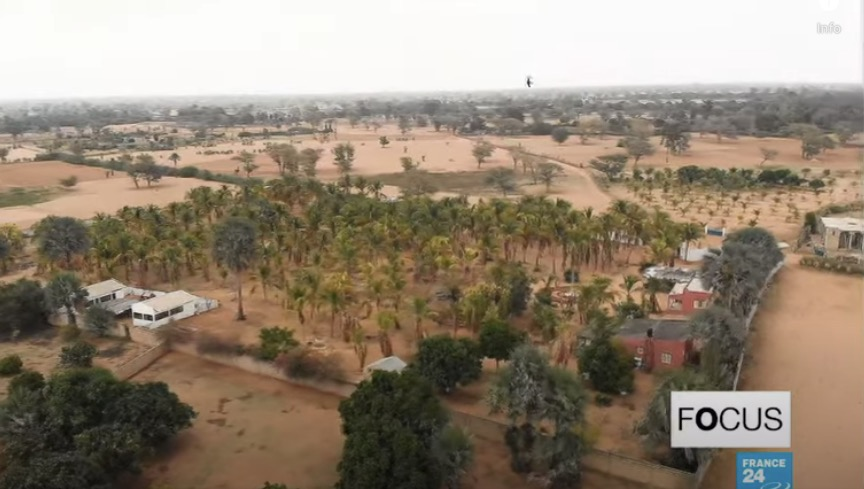 a master of permaculture grows a lush oasis in the desert